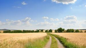 Ustawą o wstrzymaniu sprzedaży ziemi rolnej.