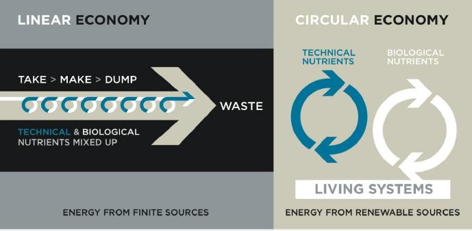 Różce między gospodarką linearną i okrężną, źródło: JWTIntelligence.com