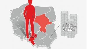 Portret statystycznego dłużnika, źródło: BIG