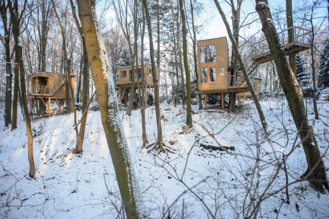 Apartamenty W Drzewach w Nałęczowie  fot.(wp/mr) PAP/Wojciech Pacewicz