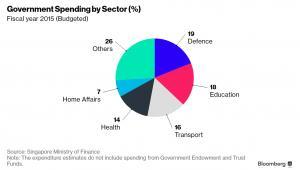 Struktura wydatków rządowych Singapuru w roku fiskalnym 2015