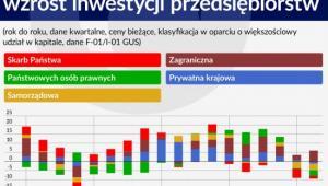 Wkład sektorów własności we wzrost inwestycji przedsiębiorstw
