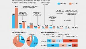 W jakich zawodach pracodawcy zatrudniają Ukraińców