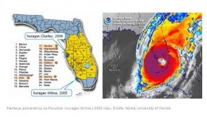 Plantacje pomarańczy na Florydzie i huragan Wilma z 2005 roku. Źródło: NOAA, University of Florida