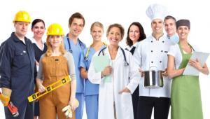 zawody-praca-pracownicy