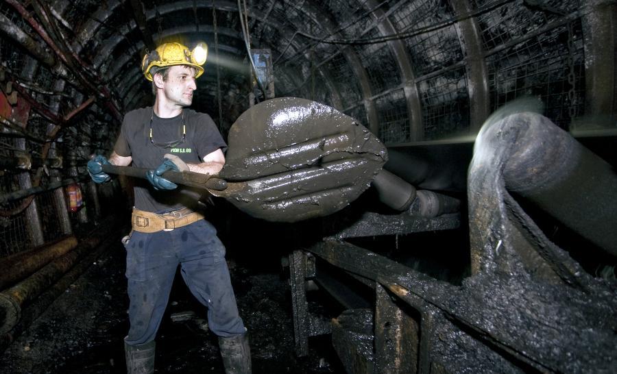 Górnik ładujący węgiel na taśmę transportową w kopalni w Jaworznie. Tauron jest właścicielem kopalni.
