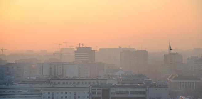 Czy pozwy o smog idą w parze z polskim prawem? I kogo skarżyć – państwo czy JST?