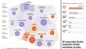 Sytuacja demograficzna polskich województw wg Narodowego Spisu Powszechnego 2011
